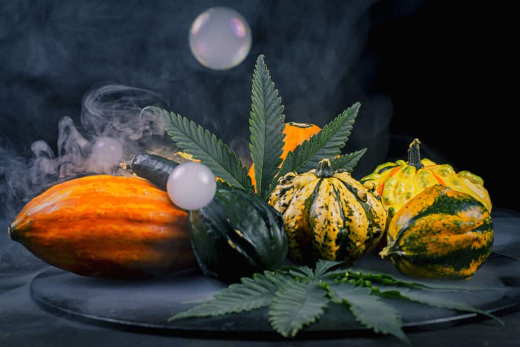 Top Cannabis Strains to Pair with Your Thanksgiving Dinner