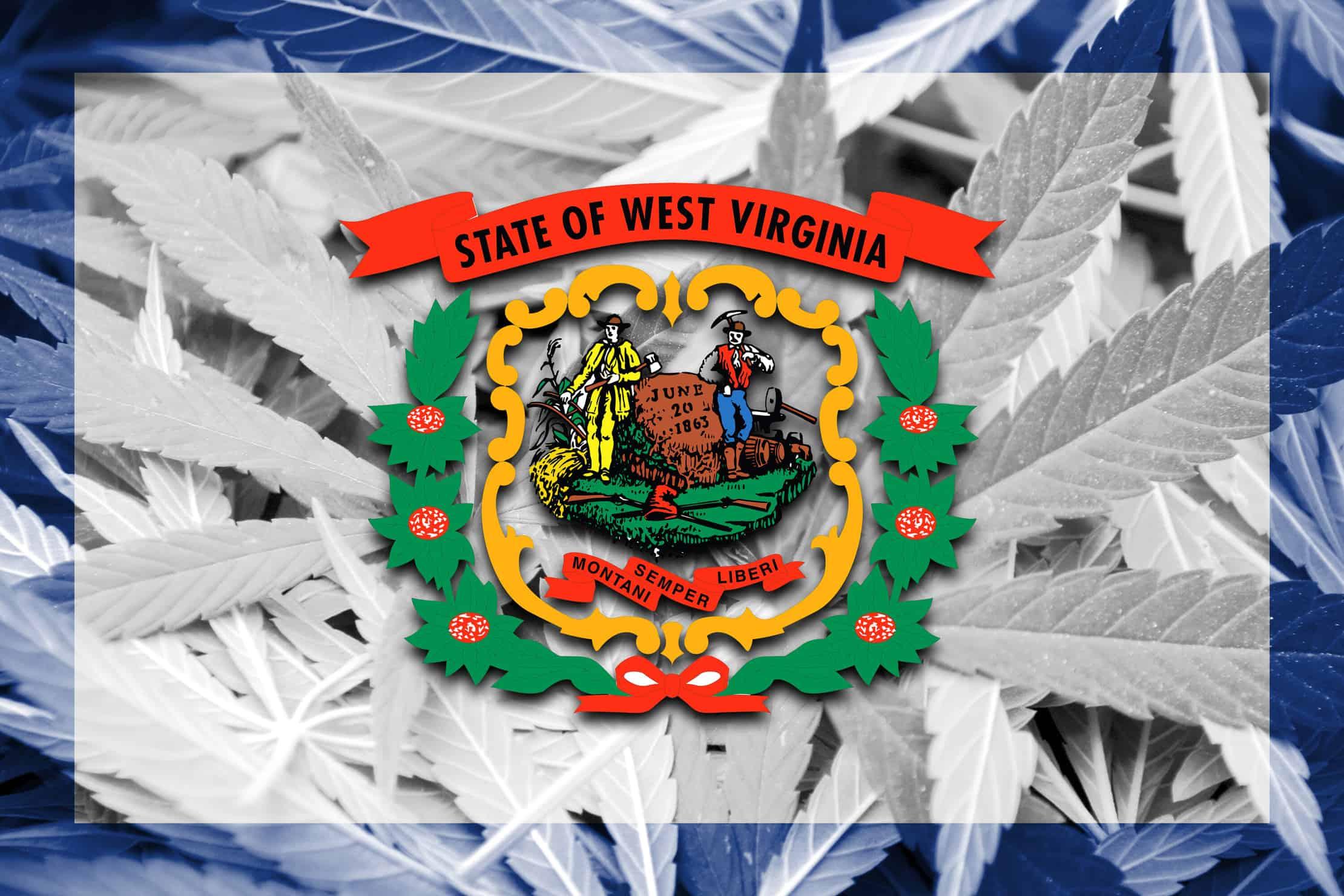 Virginia Cannabis Decriminalization Bill. Virginia marijuana laws.