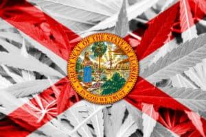 medical marijuana jobs in florida