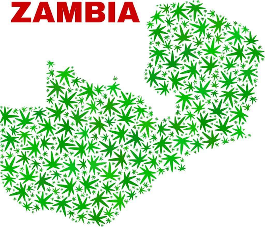 Zambia Legalizes Marijuana Growing