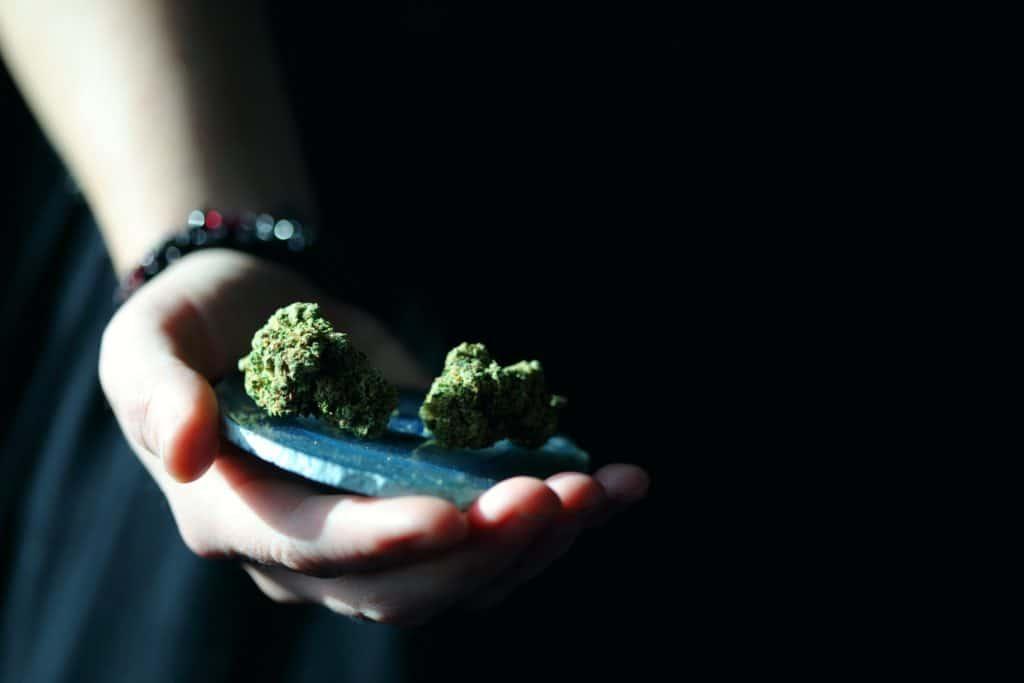 Seattle Judges Vacate More Than 500 Marijuana Cases