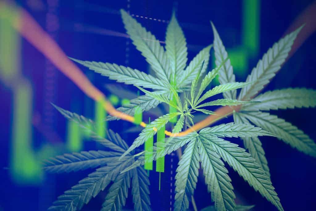 Best Marijuana Stocks 2020
