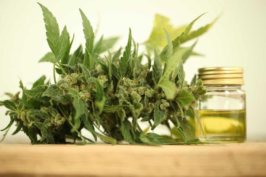 Fluent (Formerly Knox Medical) Medical Marijuana Dispensary Florida