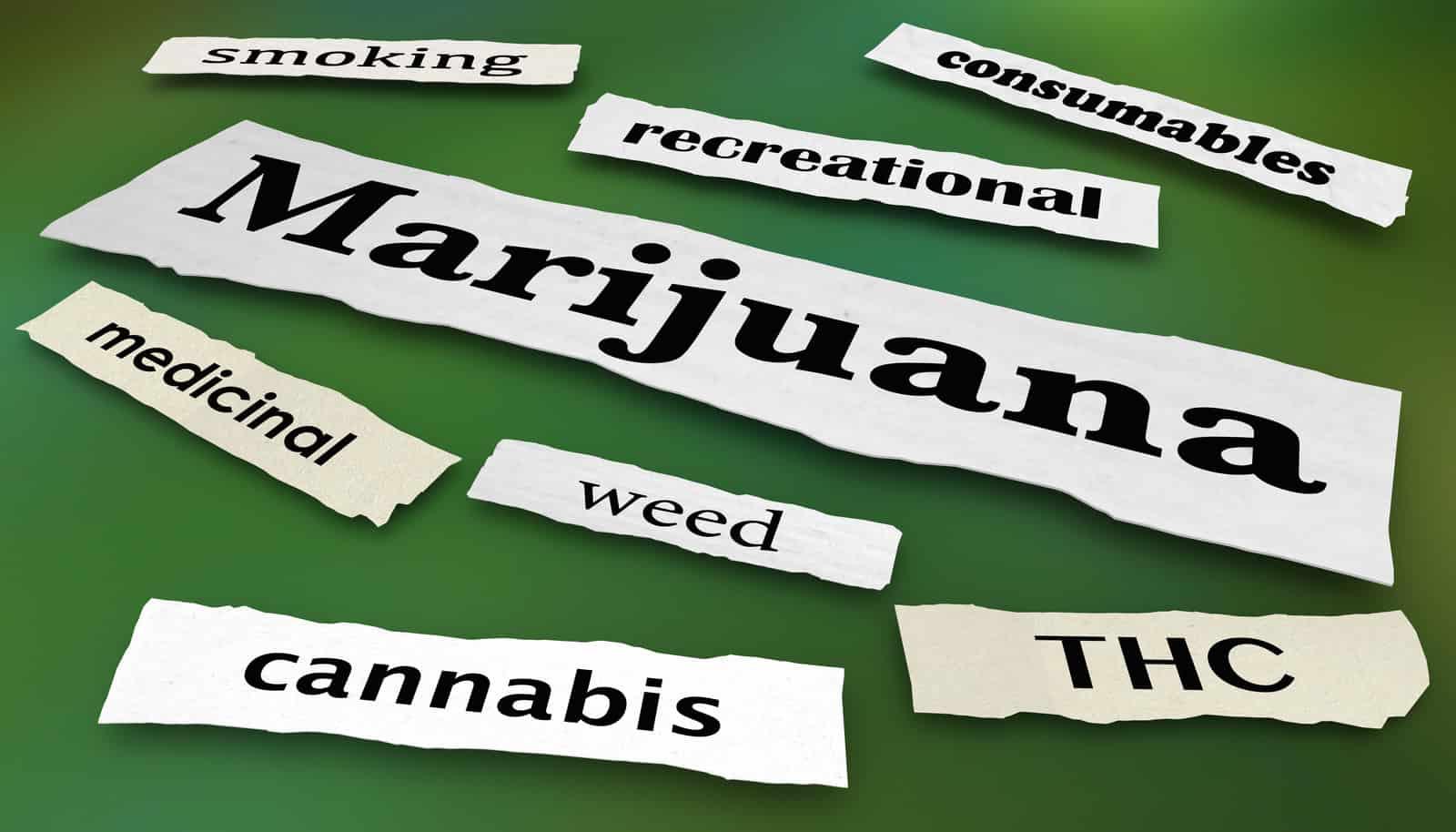 Marijuana News Recap February 2020