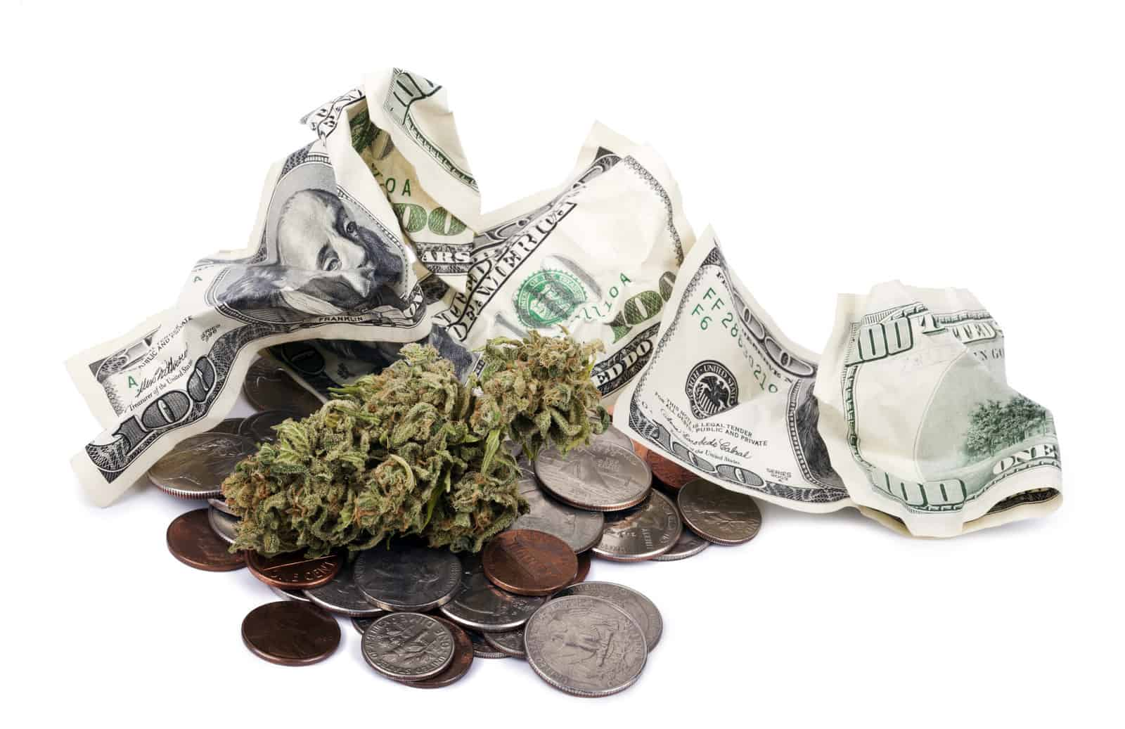 Marijuana Salaries Cannabis Jobs