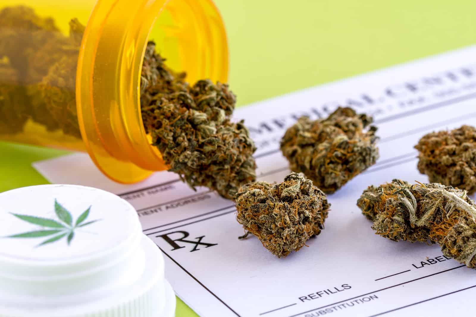Cannabis marijuana training courses. Marijuana buds in a prescription bottle.