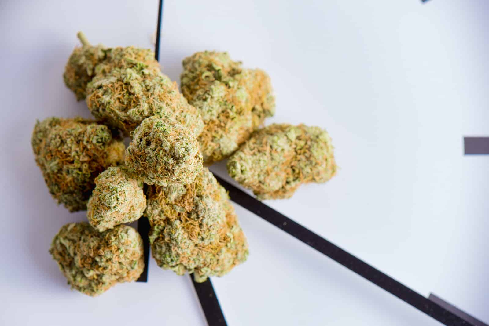 What Does 420 stand for? marijuana buds