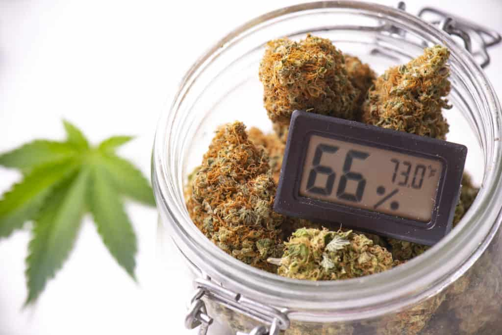 Cannabis in a jar with a scale, how to become a budtender in Oklahoma