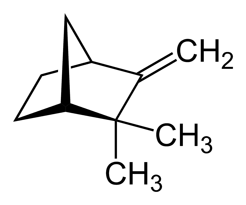 A Guide to Marijuana Derived Camphene. Camphene compound.