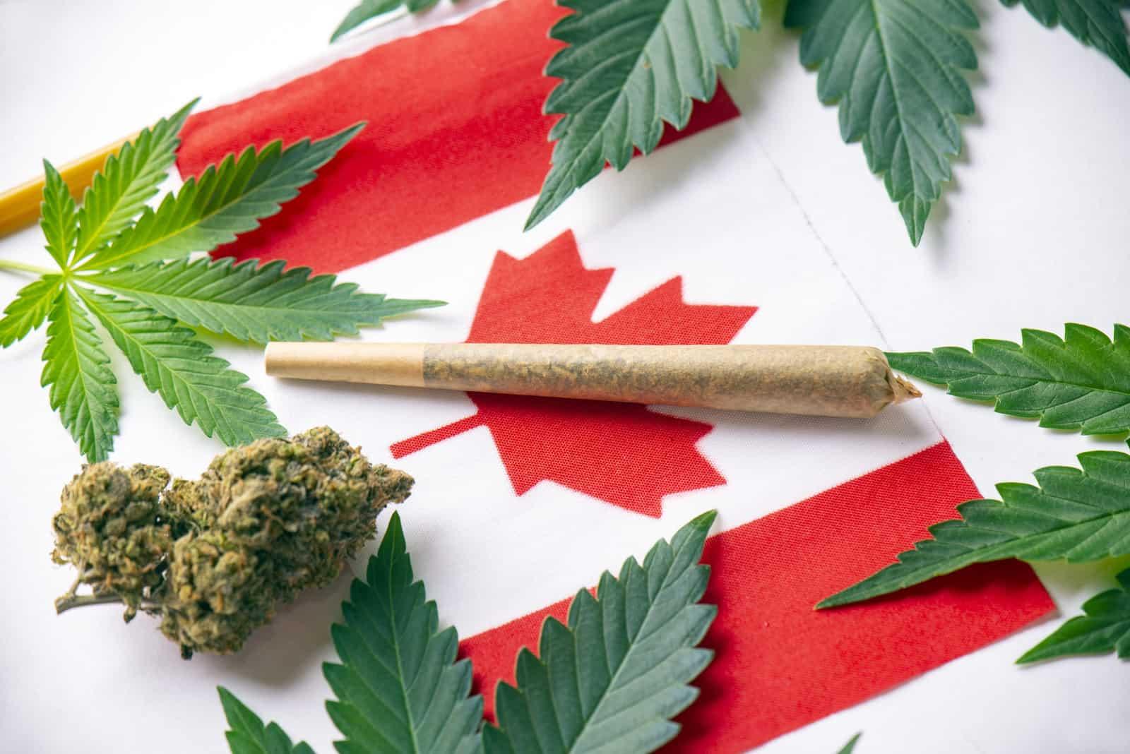 Canada Cannabis Jobs and Marijuana Careers. Canadian flag with marijuana.