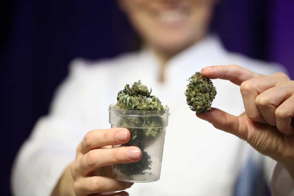 budtender holding a marijuana bud with a cup of bud in her other hand, How to Become a Budtender in Florida