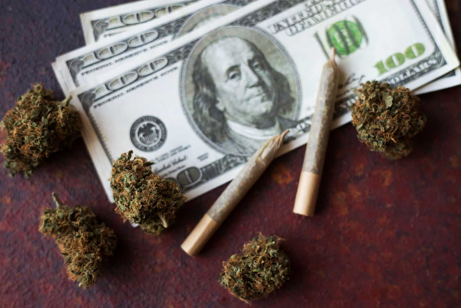 How to Become a Budtender in Michigan