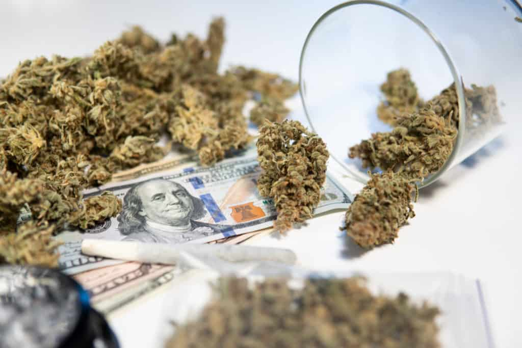 How to Open a Cannabis Dispensary in Florida. Marijuana with money.