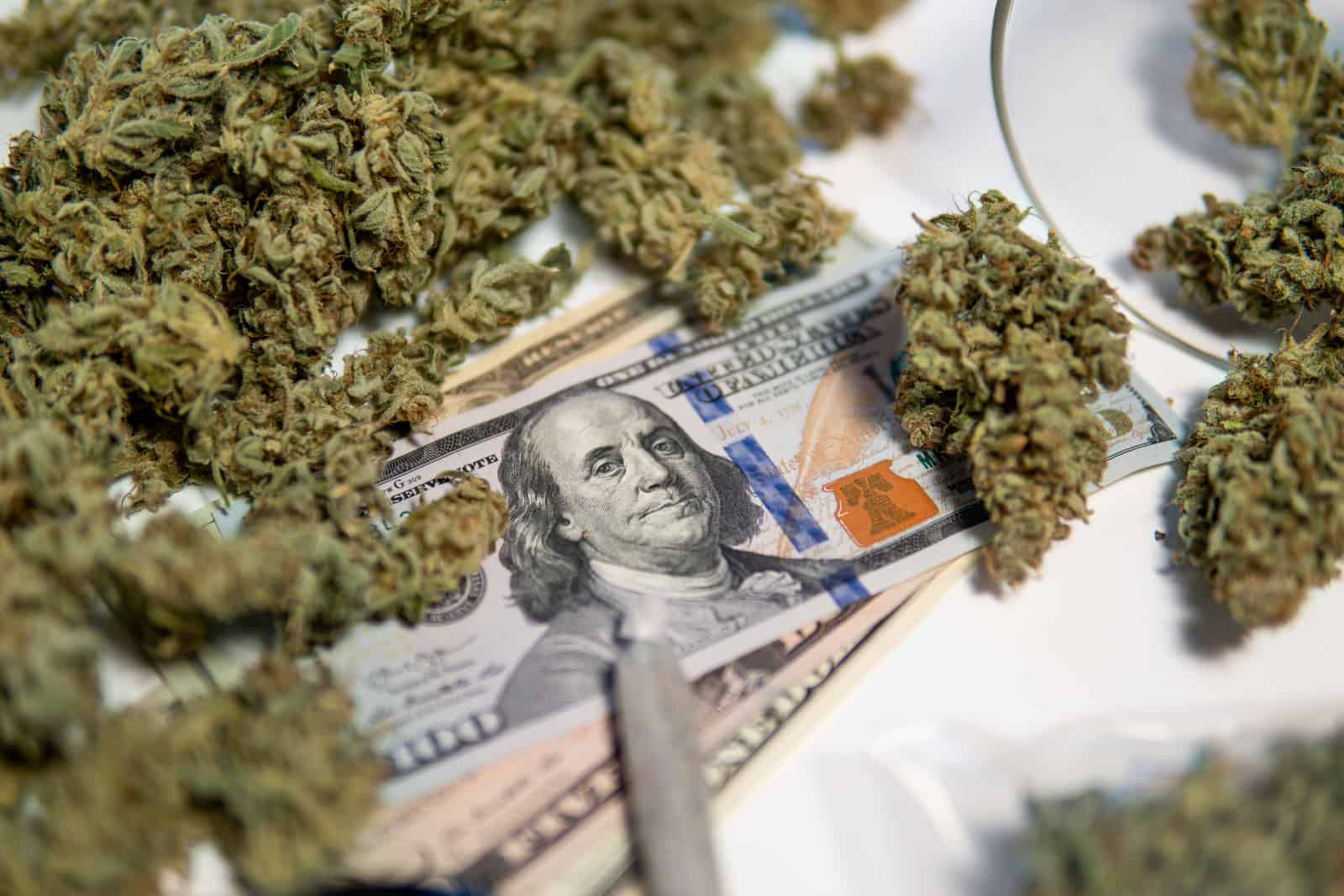 How to Open a Marijuana Dispensary in Oregon. Money with weed on it.