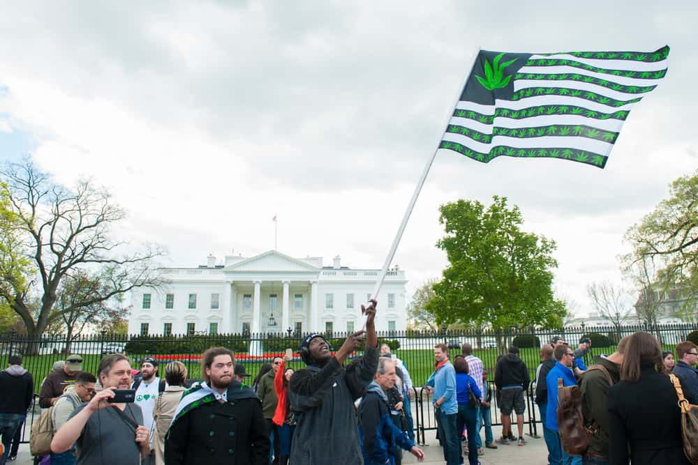 Is Weed Legal in Washington D.C.?