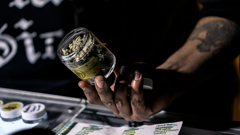 How to Get a Job in a Medical Marijuana Dispensary