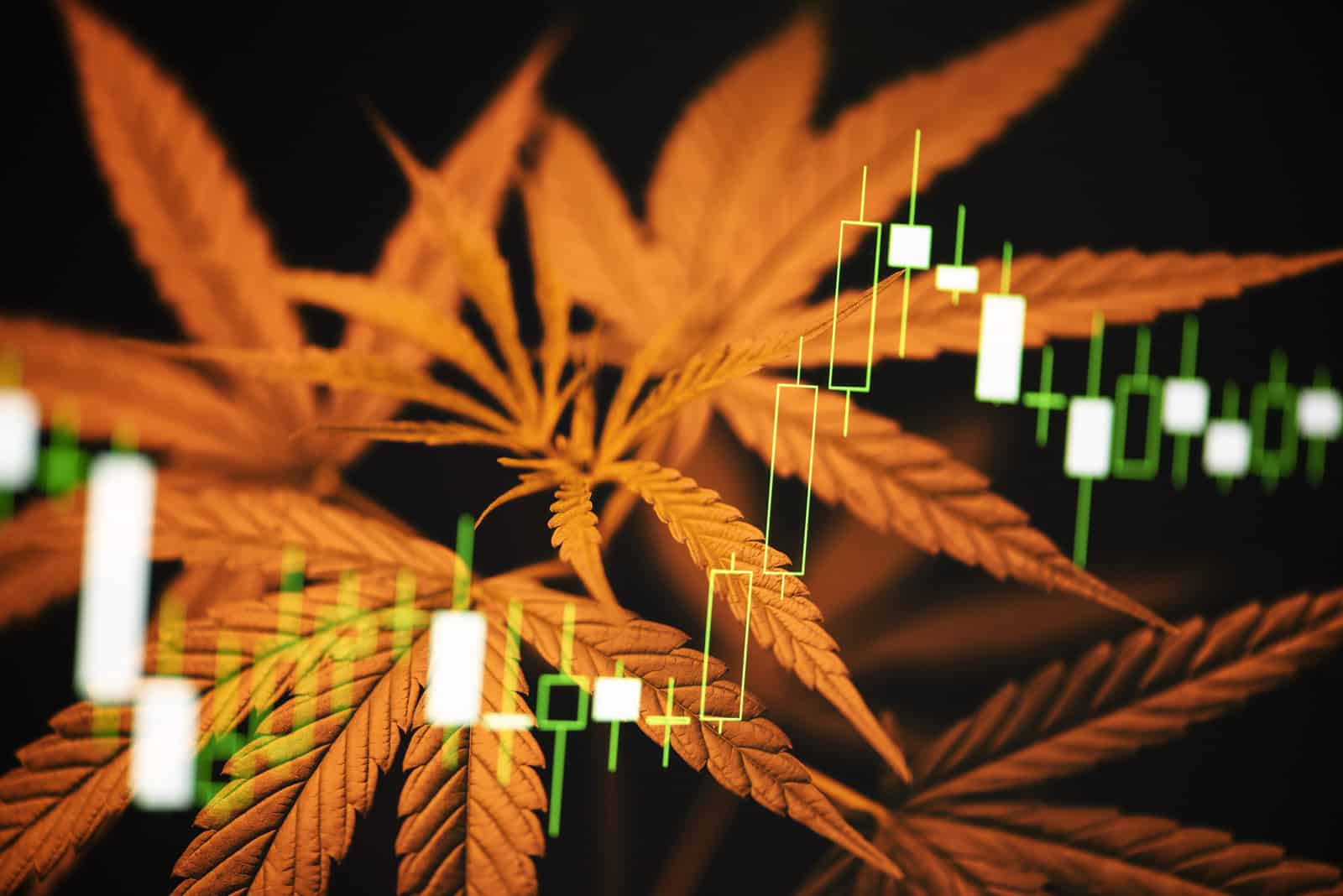Is Green Thumb Industries Stock A Good Investment?