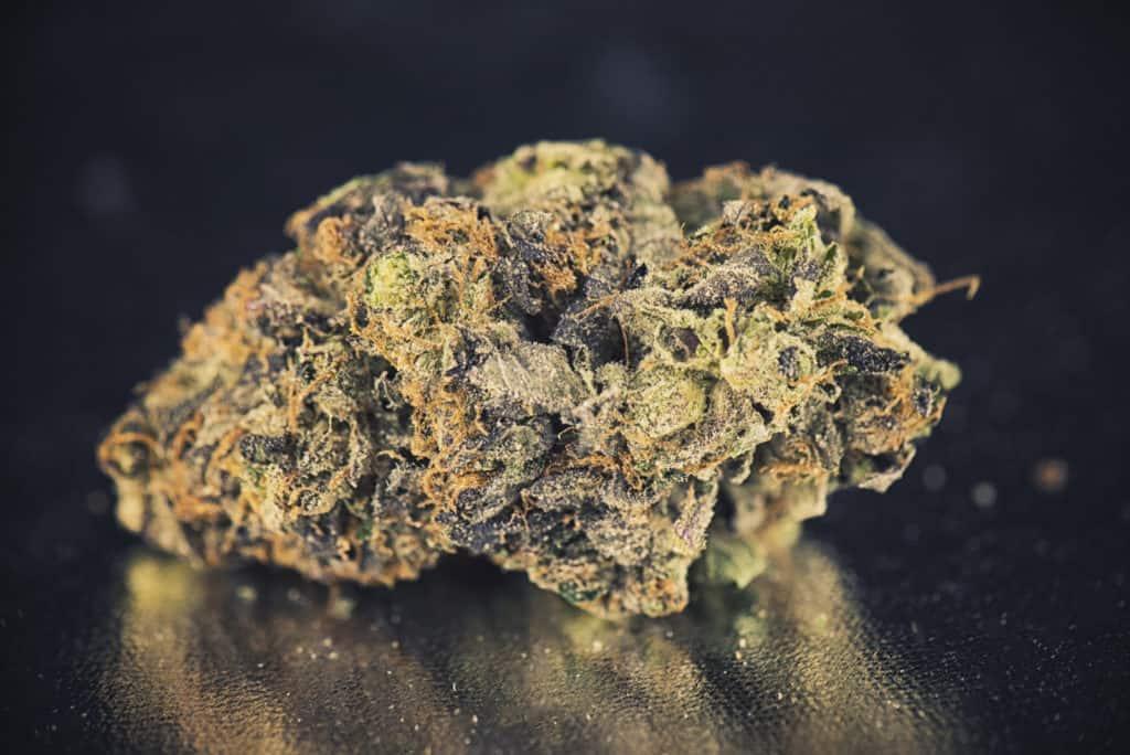 Biscotti Cannabis Strain Review. Up close of a marijuana bud.