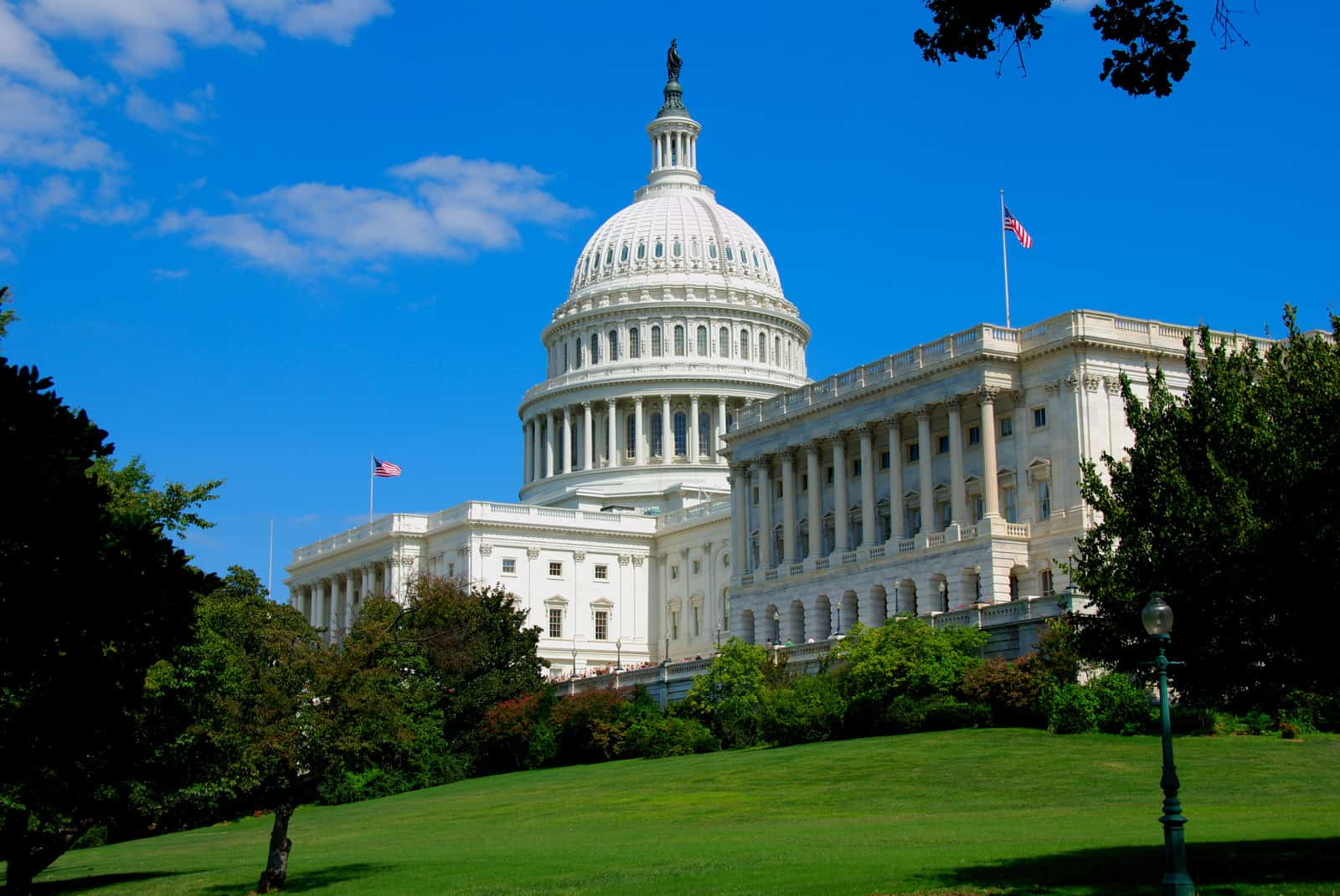 Marijuana and the 2020 Senate Race: State by State. White House.