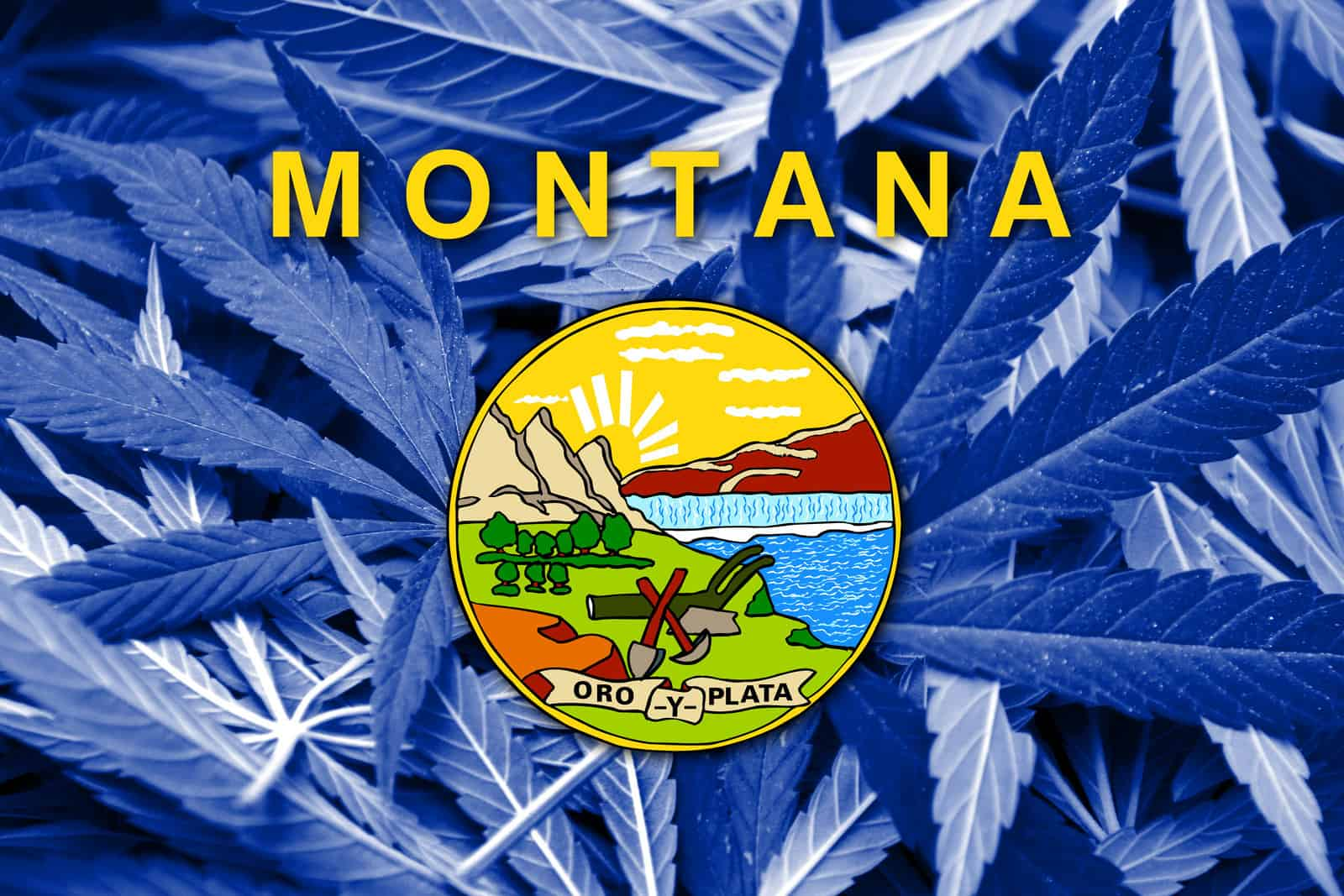 Is Cannabis Legal in Montana? Montana state sign.