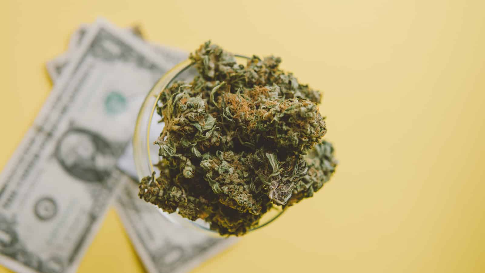Cannabis bud on top of dollar bills