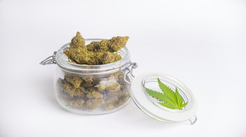 Mankind Dispensary marijuana in a glass jar with a pot leaf.