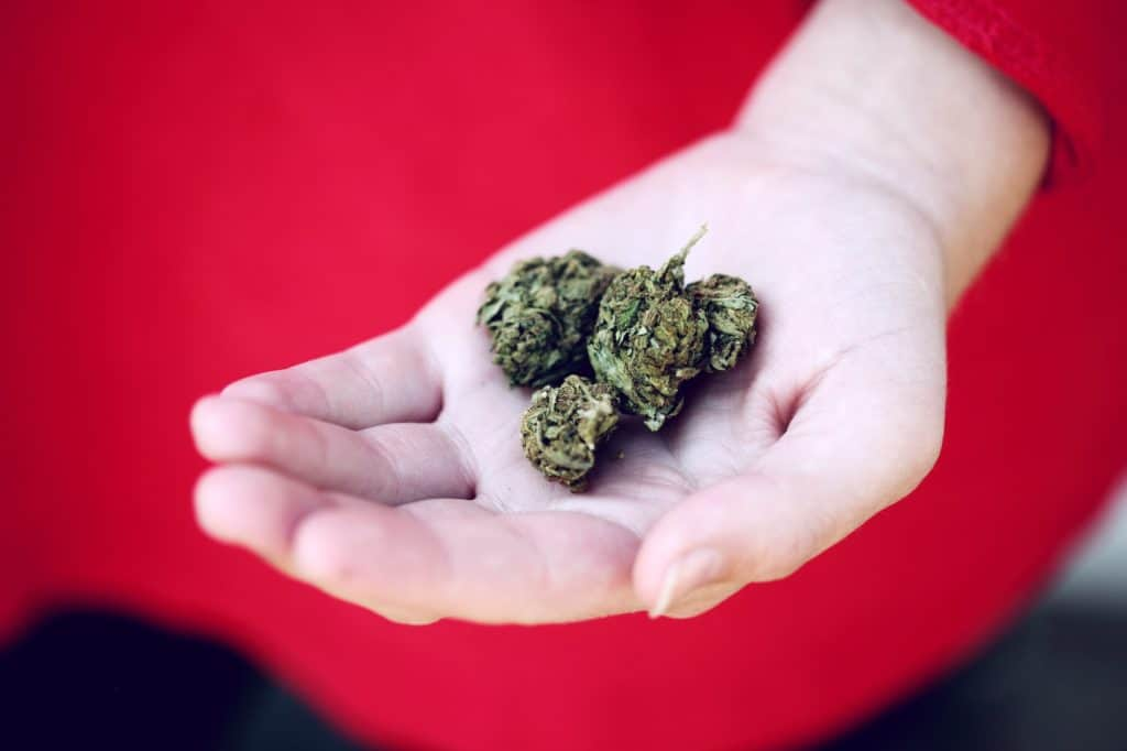 Best Marijuana strain for creativity in the palm of a hand.