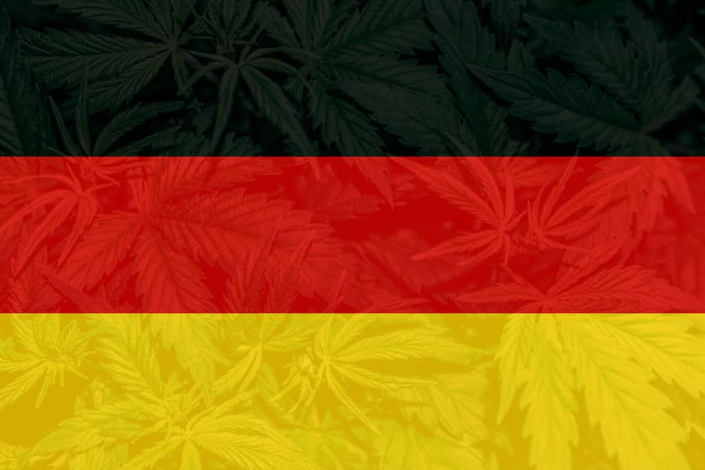 The German flag with cannabis in the background for the Cannabis College Germany.