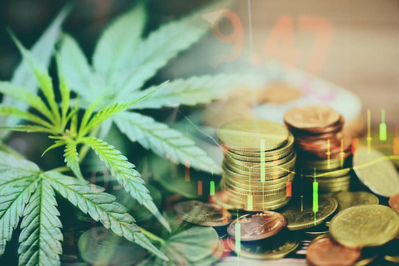 Top cannabis stocks chart with marijuana leaves and coins in the back ground.