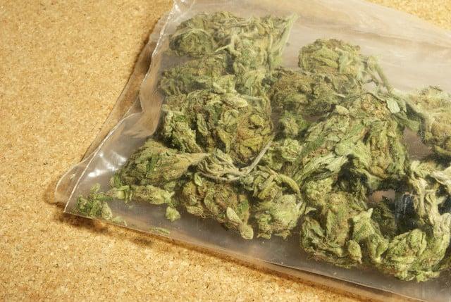 Mandarin Cookies strain in a plastic bag