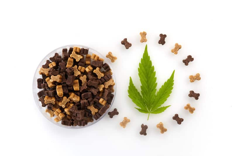 Marijuana dog treats, Medical Marijuana for Dogs Recipe