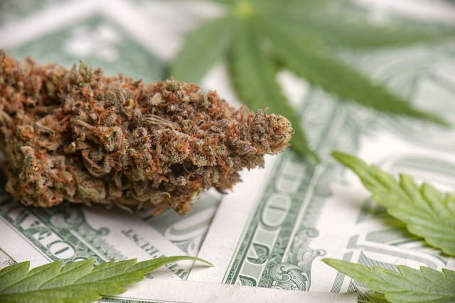 Top Cannabis Stocks for February 2021, marijuana on top of dollar bills.