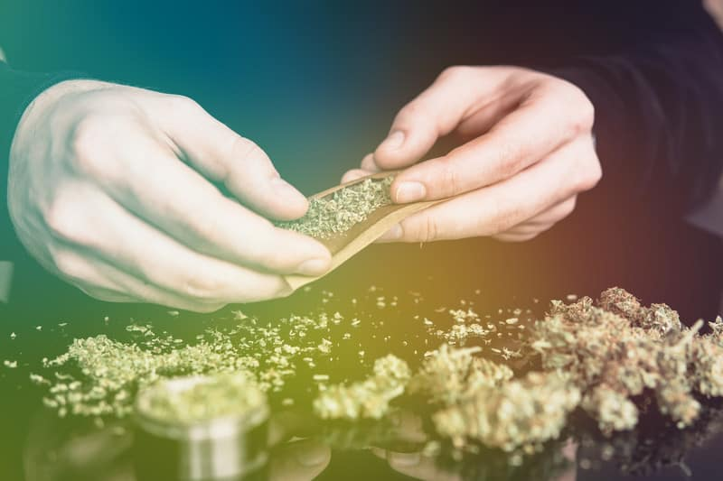 Why Democratic Control Is A Win For The Cannabis Industry. man rolling a cannabis joint