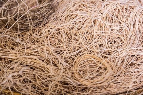 Hemp fiber close up