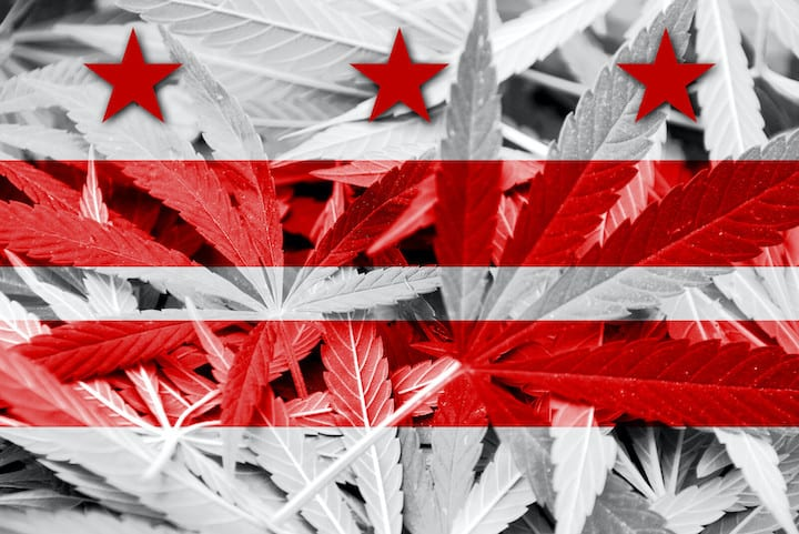 flag with cannabis leaves, how to get a cannabis job in Washington DC