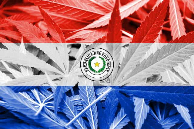 flag of Paraguay, The Cannabis College Paraguay
