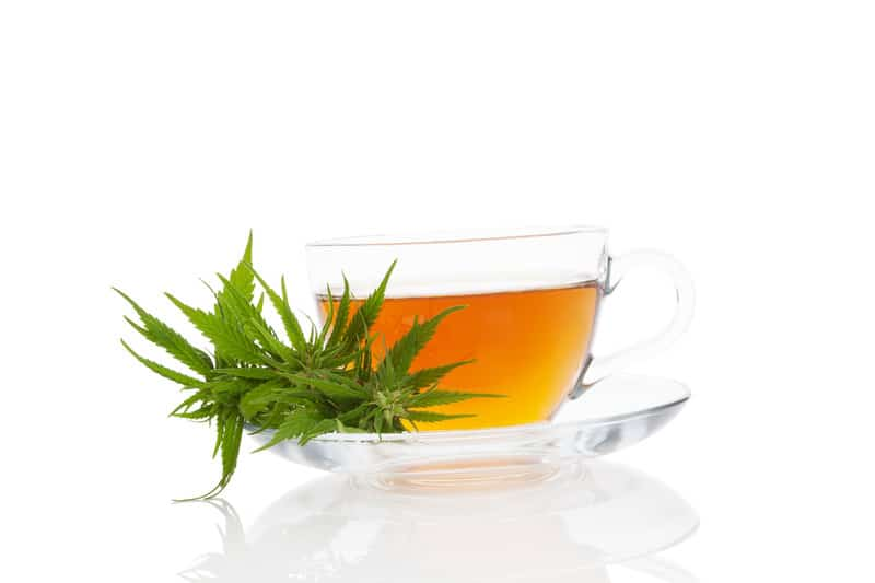 hemp tea and marijuana leaves