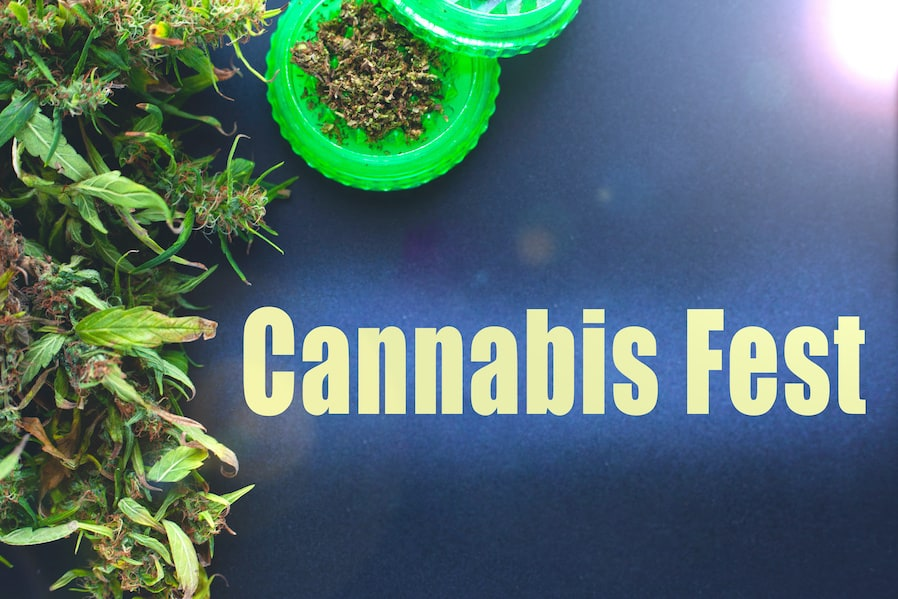 cannabis fest with marijuana buds, 420 events 2021