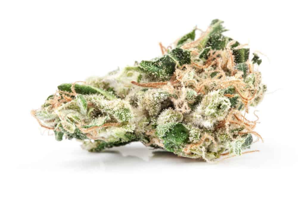 up close of marijuana strain on white surface, tangerine dream strain