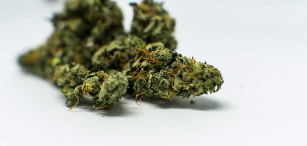marijuana buds on white surface, cookie jar strain