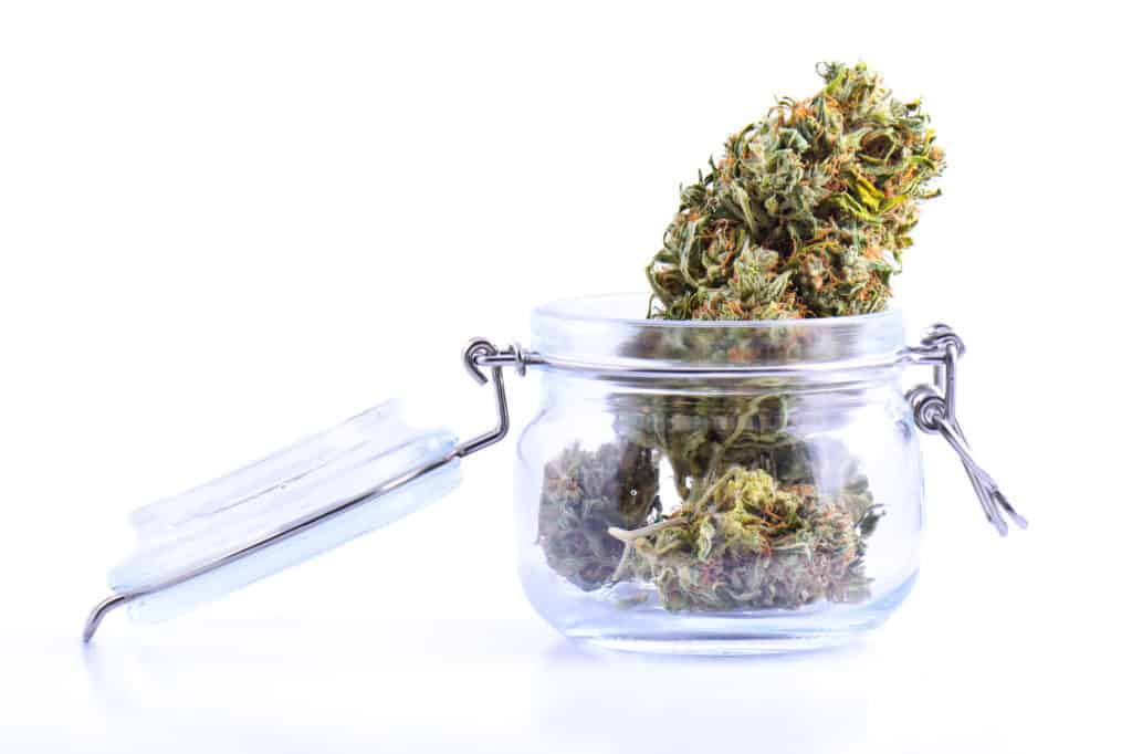 cannabis bud in glass jar on white surface, white 99 strain