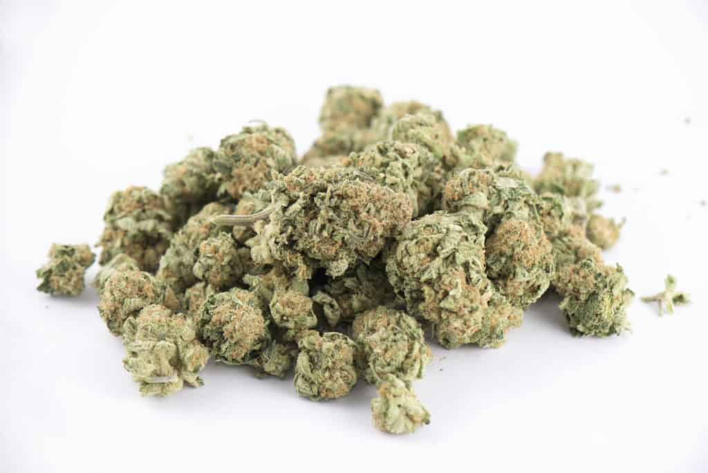 pile of cannabis buds isolated on white, gushers strain