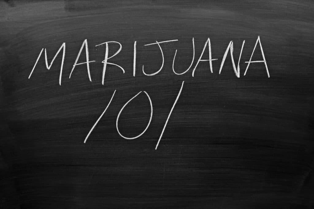 marijuana 101 written in chalk on chalkboard, cannabis Institute in Michigan