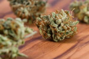 marijuana buds on wood table, diamond cookies strain