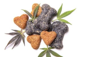 dog treats and marijuana leaves on white surface, pet relief cbd
