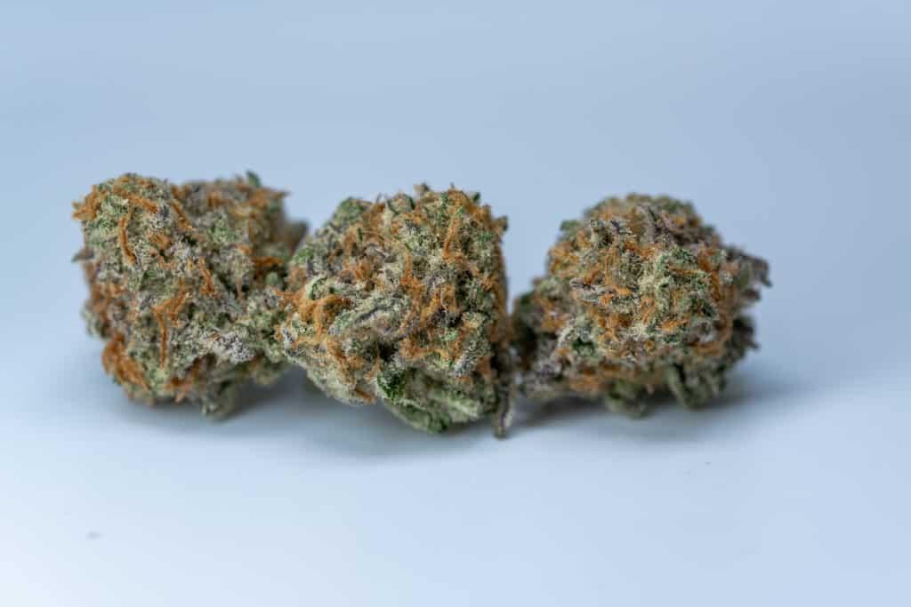 three cannabis nuts isolated on blue, Mac strain