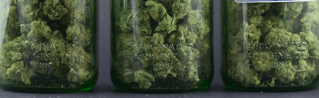 cannabis jars, hot strains for summer