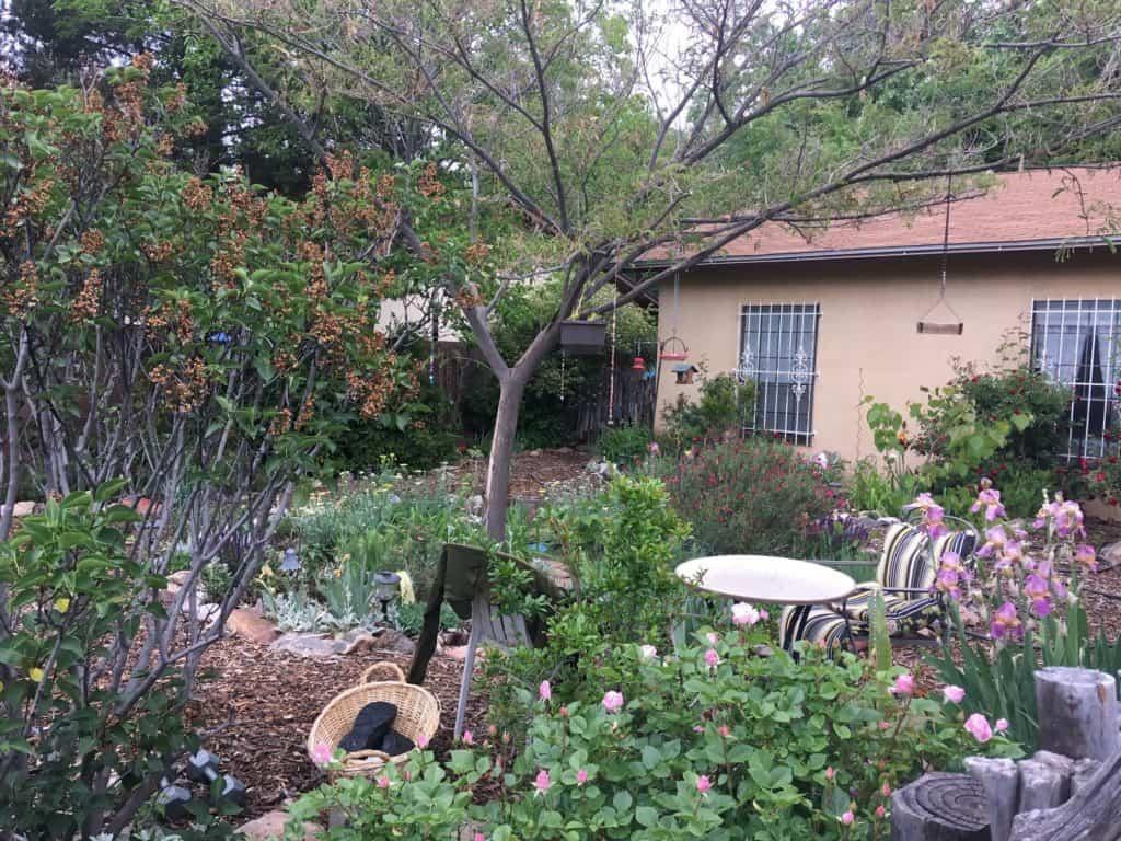 mother bosque gardens 13b44cc5ad716f3a294caaf8b26e7c5c