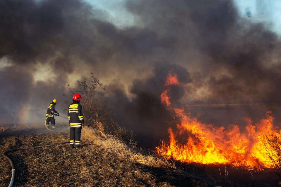 firefighters putting out a fire in the hills, How to Prepare for Fire Season in the Cannabis Growing World