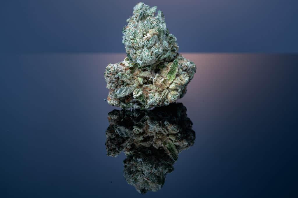 Cannabis Flower Macro, purple cookies strain